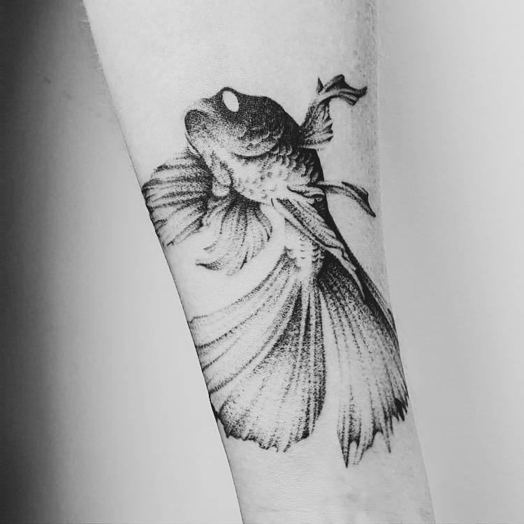 tatouage poisson avant bras